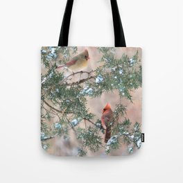 Winter Pair Cardinals (sq) Tote Bag