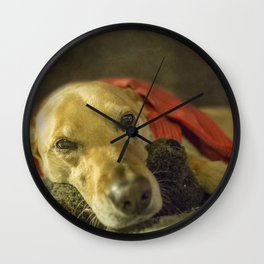 Tired Fur Baby Wall Clock