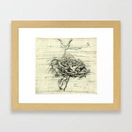 """Italian Courtyard Rose"" Framed Art Print"