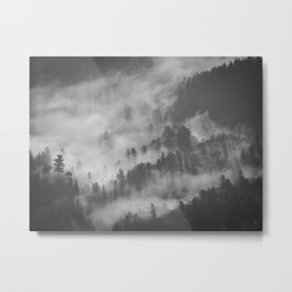 Vintage Black & White Photo Of A Mountain Forest With Mist Metal Print