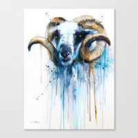 sheep Canvas Prints featuring Sheep by Slaveika Aladjova