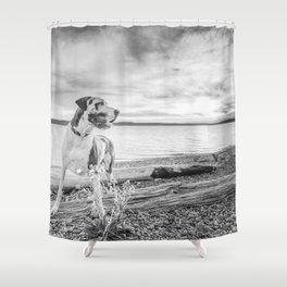 Harlequin Beach Sunset Shower Curtain