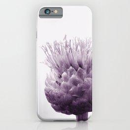Monochrome - Centaurea iPhone Case