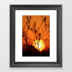 Goodnight Sun Framed Art Print