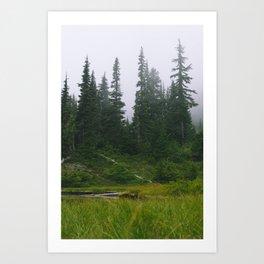 Pond of the False Prophet Art Print