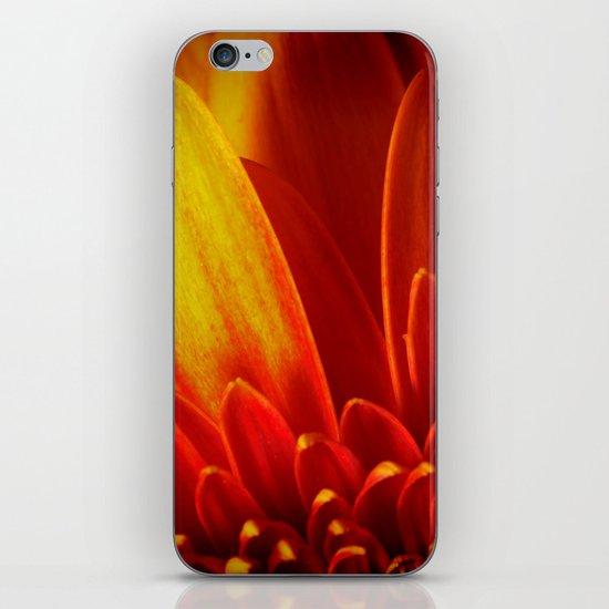 Gerbera in Love iPhone & iPod Skin