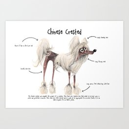 C is for Chinese Crested Art Print