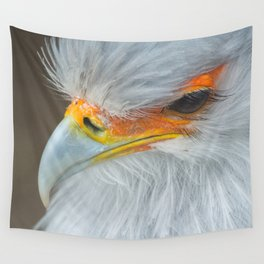 Feathers and eyelashes Wall Tapestry