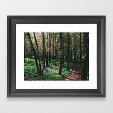 Oregon Trail Framed Art Print
