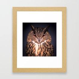 The Wise Owl Framed Art Print