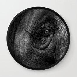 Portrait of an Elephant  Wall Clock