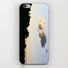 I could really use a wish right now iPhone Skin