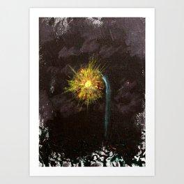 Conchord Park Art Print