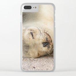 Sleeping sea lion on the beach Clear iPhone Case