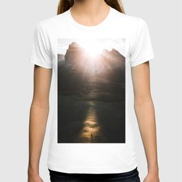 Aerial of a Lone Tree at the Alpe di Siusi Dolomites - Landscape Photography T-shirt