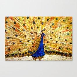 Schirmer Peacock Canvas Print