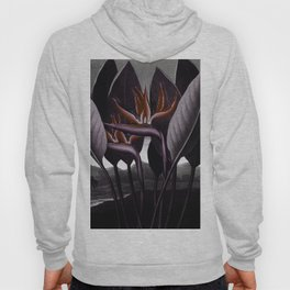 Birds of Paradise : Temple of Flora Dark Hoody