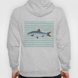 VINTAGE BLUE FISH Hoody