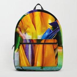 Freedom flower Backpack