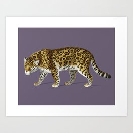 Fierce Jaguar Art Print