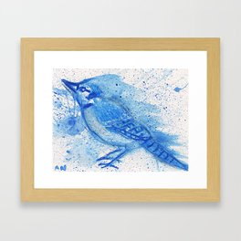 Blue Jay Bird Abstract and Expressive Framed Art Print