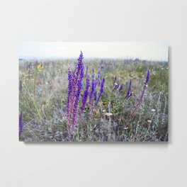 Rustic print Country photography wildflowers Botanical wall art Floral living room decor Metal Print