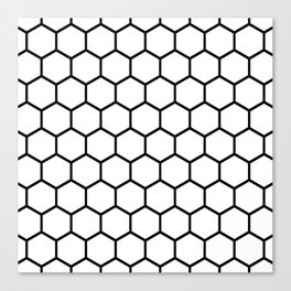 White and black honeycomb pattern Canvas Print