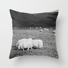 Icelandic sheep grazing in field (black and white) Throw Pillow