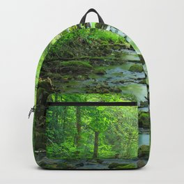Rocky Forest Creek Backpack