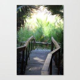 Path Through San Andreas Fault Desert Oasis Coachella Preserve Canvas Print