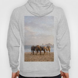 Horses on the beach Hoody