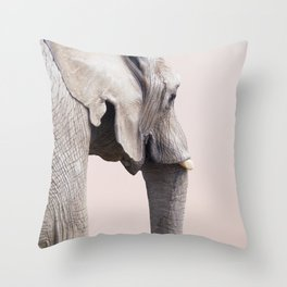Animal Photography Elephant Portrait | Wildlife | Nature | Pink | Blush Pink Throw Pillow