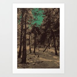 In the snowy  clearing Art Print