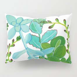 Indian Pot with Succulents Pillow Sham