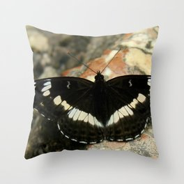 Butterfly on a Rock Throw Pillow