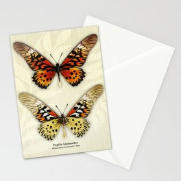 Butterfly14_Papilio Antimachus • male pair Stationery Cards