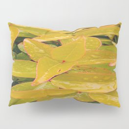 Leaves With Rain Droplets Pillow Sham
