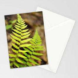 Spring Ferns Stationery Cards