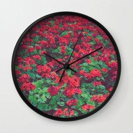 Geraniums Wall Clock