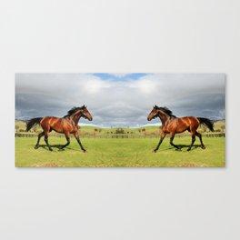 Mirror Horse 2 Canvas Print