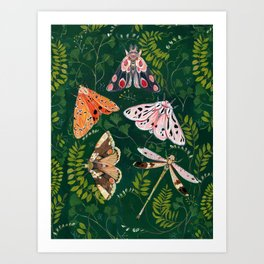 Moths and dragonfly Art Print