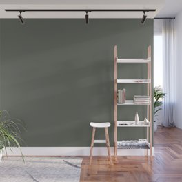 Dark Pine Green Solid Color Pairs w/ Sherwin Williams Haven 2020 Forecast Color Pewter Green SW6208 Wall Mural