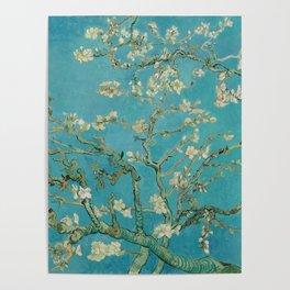 Almond Blossoms Vincent van Gogh Blue Floral Poster