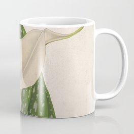 Vintage Flower Calla Lily with Green Leaves Closeup Coffee Mug