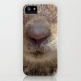 Watercolor Golden-Mantled Ground Squirrel mask 01 iPhone Case