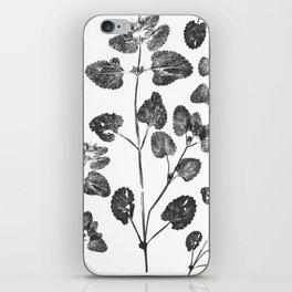 Dead Leaves iPhone Skin
