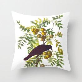 American Crow Hand Drawn Illustrations Vintage Scientific Art John James Audubon Birds Throw Pillow