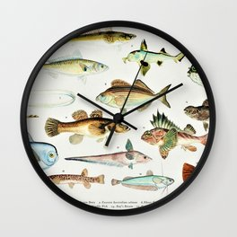 Illustrated Colorful Southern Pacific Ocean Exotic Game Fish Identification Chart No. 4 Wall Clock
