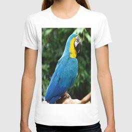 Parrot Trooper T-shirt