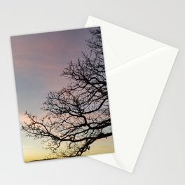 Subtle savanna sunset - Pheasant Branch Conservancy Stationery Cards